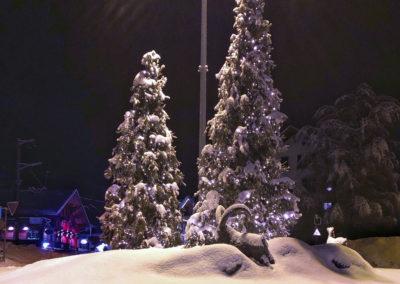 Sapin hiver